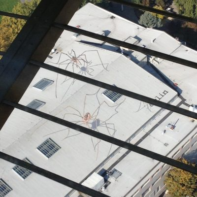 Huge spiders on top of a roof.
