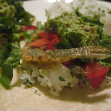 Smelt Fish Tacos